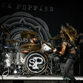 sickpuppies-83