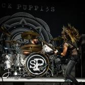 sickpuppies-83